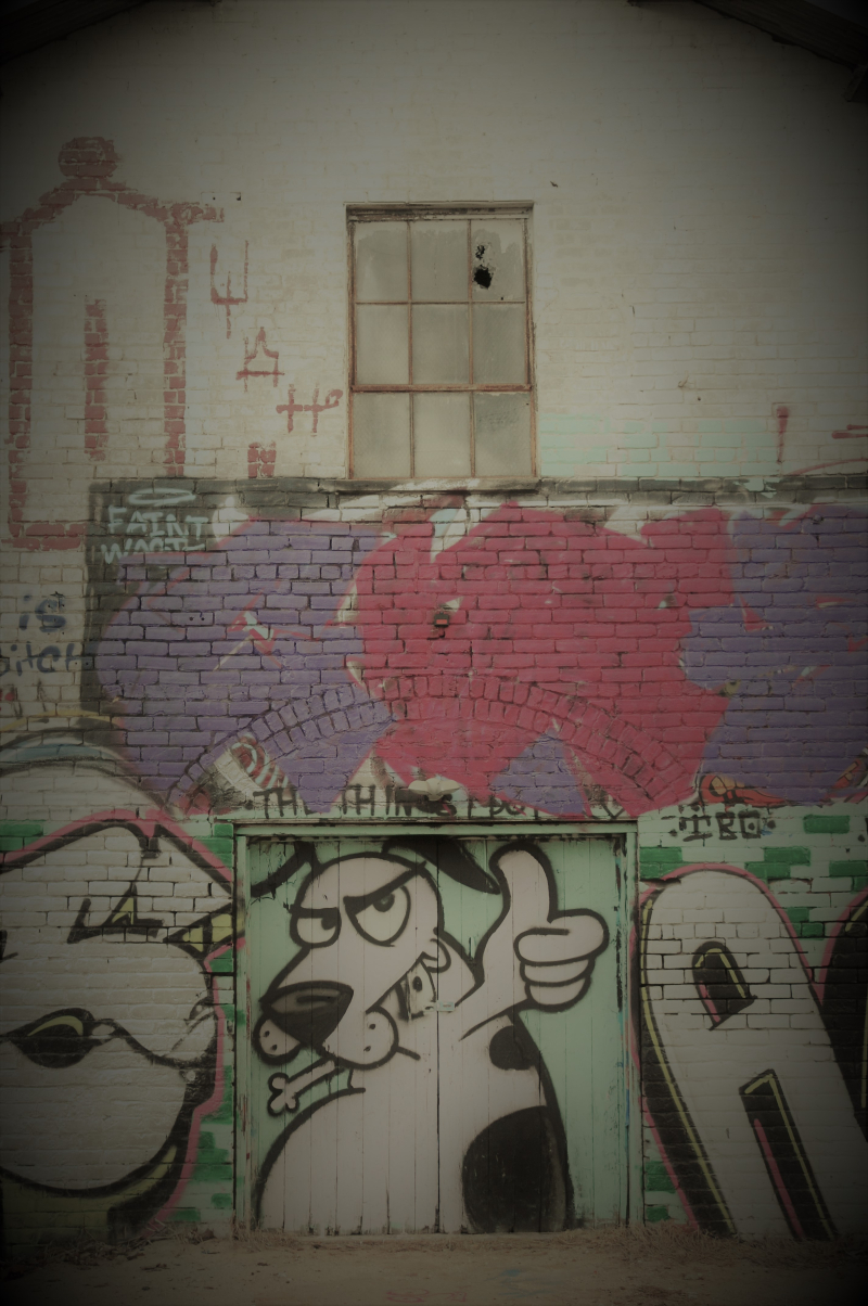 Grafiti Dog