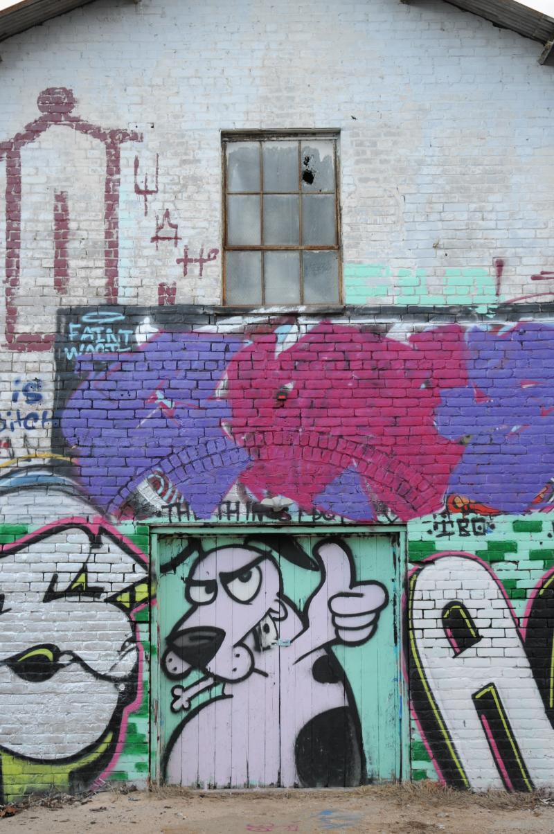 Grafiti Dog